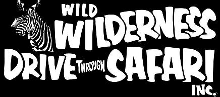 Wild Wilderness Safari